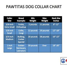 Pawtitas Reflective Dog Collar 5