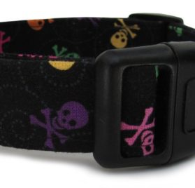 Adjustable Dog Collar in Black with Multi-Colored Skulls