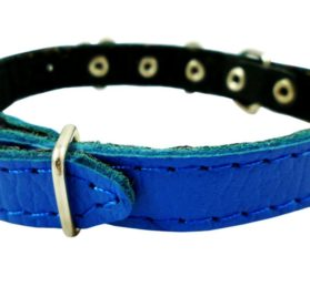 Genuine Leather Designer Dog Collar 2