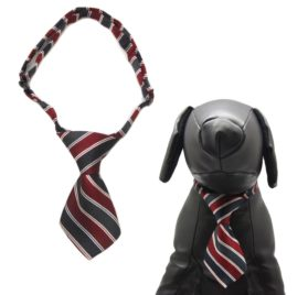 Alfie Pet by Petoga Couture - Qun Formal Dog Tie and Adjustable Collar Single - Red and Navy Stripe