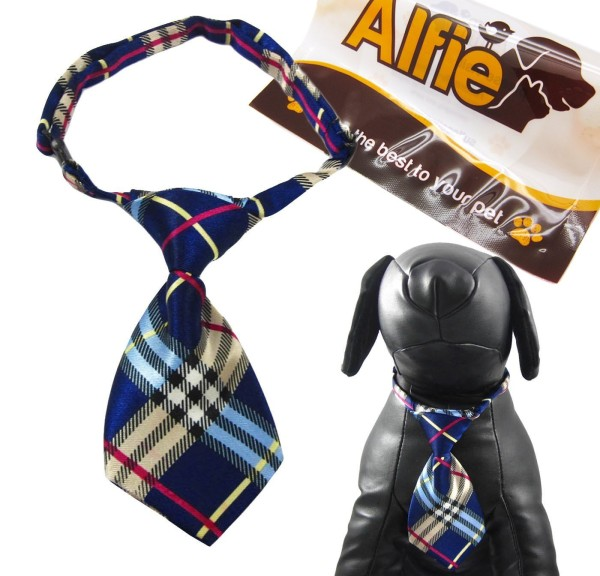 Alfie Pet by Petoga Couture - Qun Formal Dog Tie and Adjustable Collar Blue