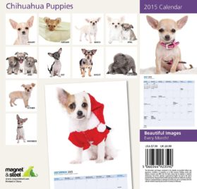 Chihuahua Puppies Mini 2015 Wall Calendar 2