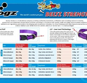 Rogz Fancy Dress Small 3/8-Inch Jellybean Dog Collar, Purple Chrome Design 2