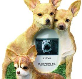 E & S Pets 35257-55 Large Dog Frame