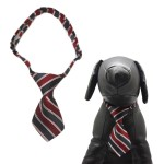 Qun Formal Dog Tie and Adjustable Collar 2
