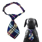 Qun Formal Dog Tie and Adjustable Collar 6