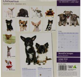 Chihuahua 2015 Wall Calendar 2