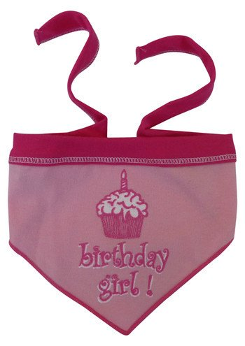 Birthday Scarf for Girl Dogs - Pink for Girls