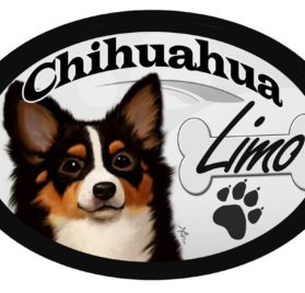 "Chihuahua (long-haired) ""Limo"" Oval Dog Magnet for Cars and such"