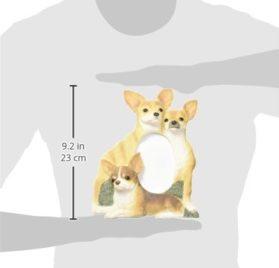 E & S Pets 35257-55 Large Dog Frame 2