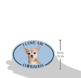 Imagine This Oval Magnet, I Love My Chihuahua 2