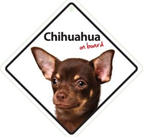 Magnet & Steel Chihuahua on Board Plastic Sign