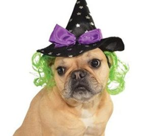 Rubies Costume Star Witch Hat with Hair Pet Accessory 2