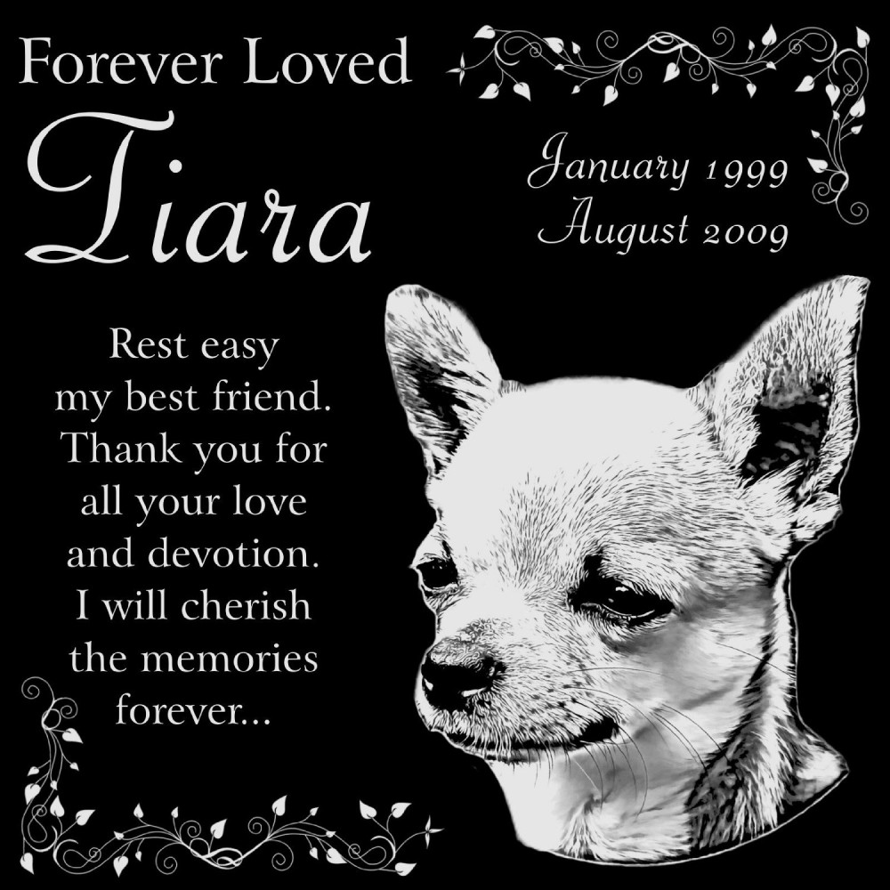 personalized chihuahua dog pet memorial 12 x12 engraved black