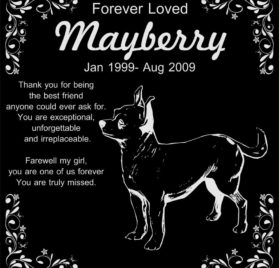 "Personalized Chihuahua Pet Memorial 12""x12"" Engraved Black Granite Grave Marker Head Stone Plaque MAY1"