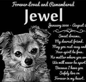"Personalized Long Haired Chihuahua Dog Pet Memorial 12""x10"" Engraved Black Granite Grave Marker Head Stone Plaque JWL1"