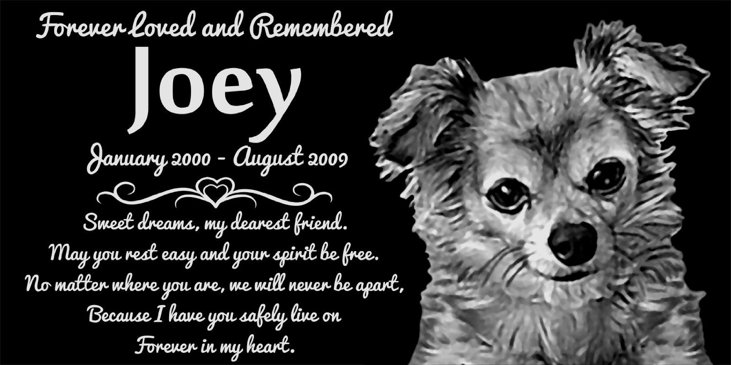 personalized long haired chihuahua dog pet memorial 12 x6 engraved