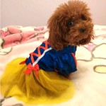 Alfie Pet Apparel by Petoga Couture - Snow White for Party Halloween Special Events Costume 8