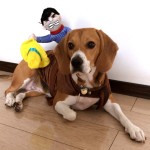 Alfie Pet Apparel by Petoga Couture - Tony the Cowboy for Party Halloween Special Events Costume 9