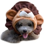 Alfie Pet by Petoga Couture - Qeno Lion Hat for Party Halloween Special Events Costume (for Small Dogs & Cats)