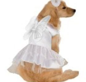 Angel Dress Pet Costume