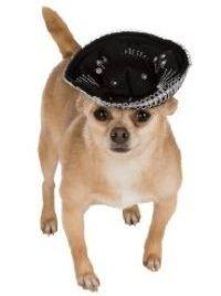 Black & Silver Sombrero Pet Hat