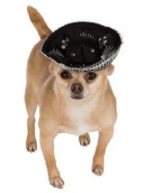 Black & Silver Sombrero Pet Hat