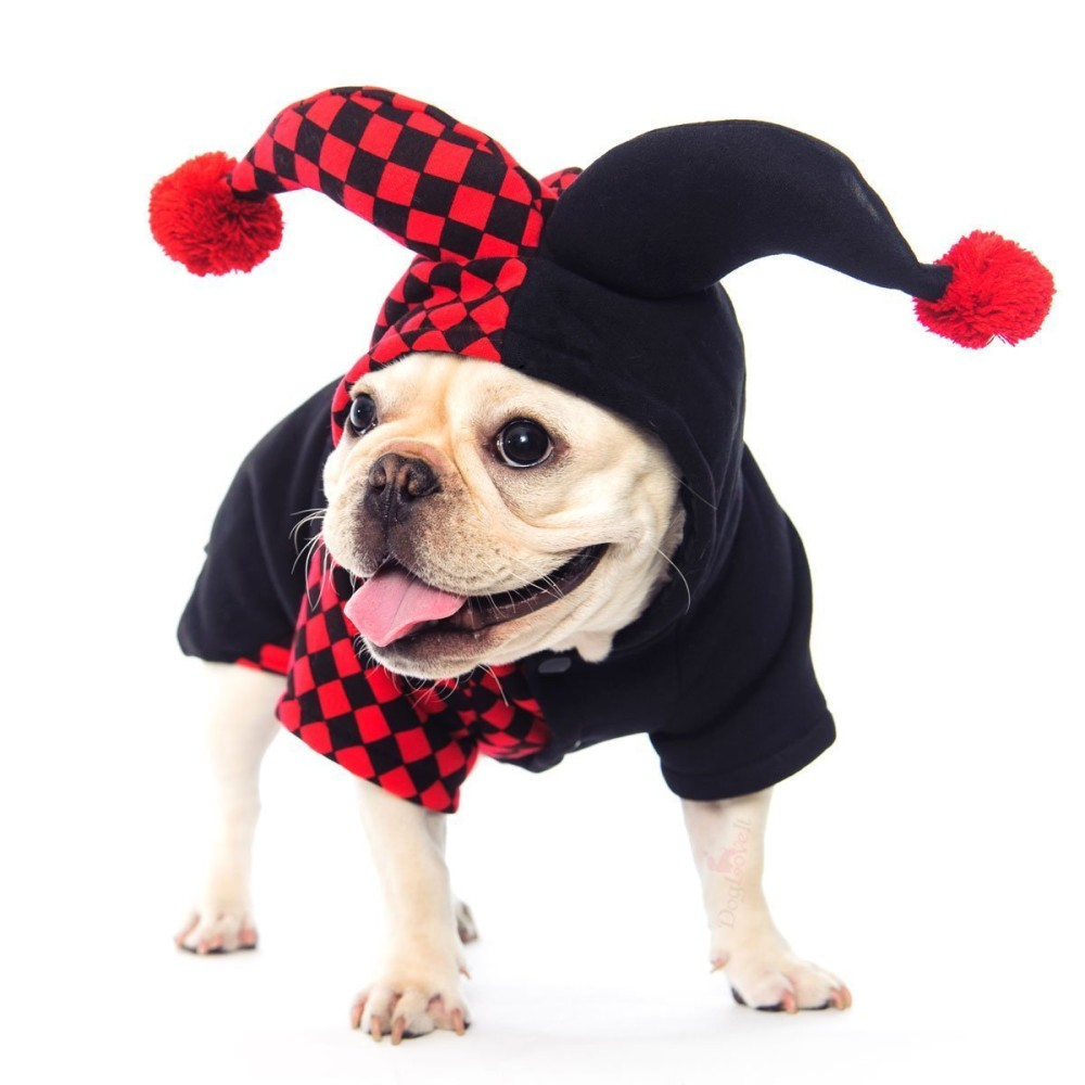 ... Dogloveit Halloween Clown Costumes Soft Dog Clothes For Dog Cat Puppy PetX-small ...  sc 1 st  Chihuahua Kingdom & Dogloveit Halloween Clown Costumes Soft Dog Clothes For Dog Cat ...