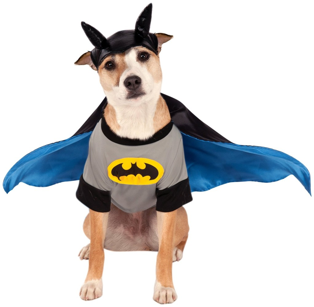 Rubies Costume DC Heroes and Villains Collection Pet Costume Small Batman  sc 1 st  Chihuahua Kingdom & Rubies Costume DC Heroes and Villains Collection Pet Costume Small