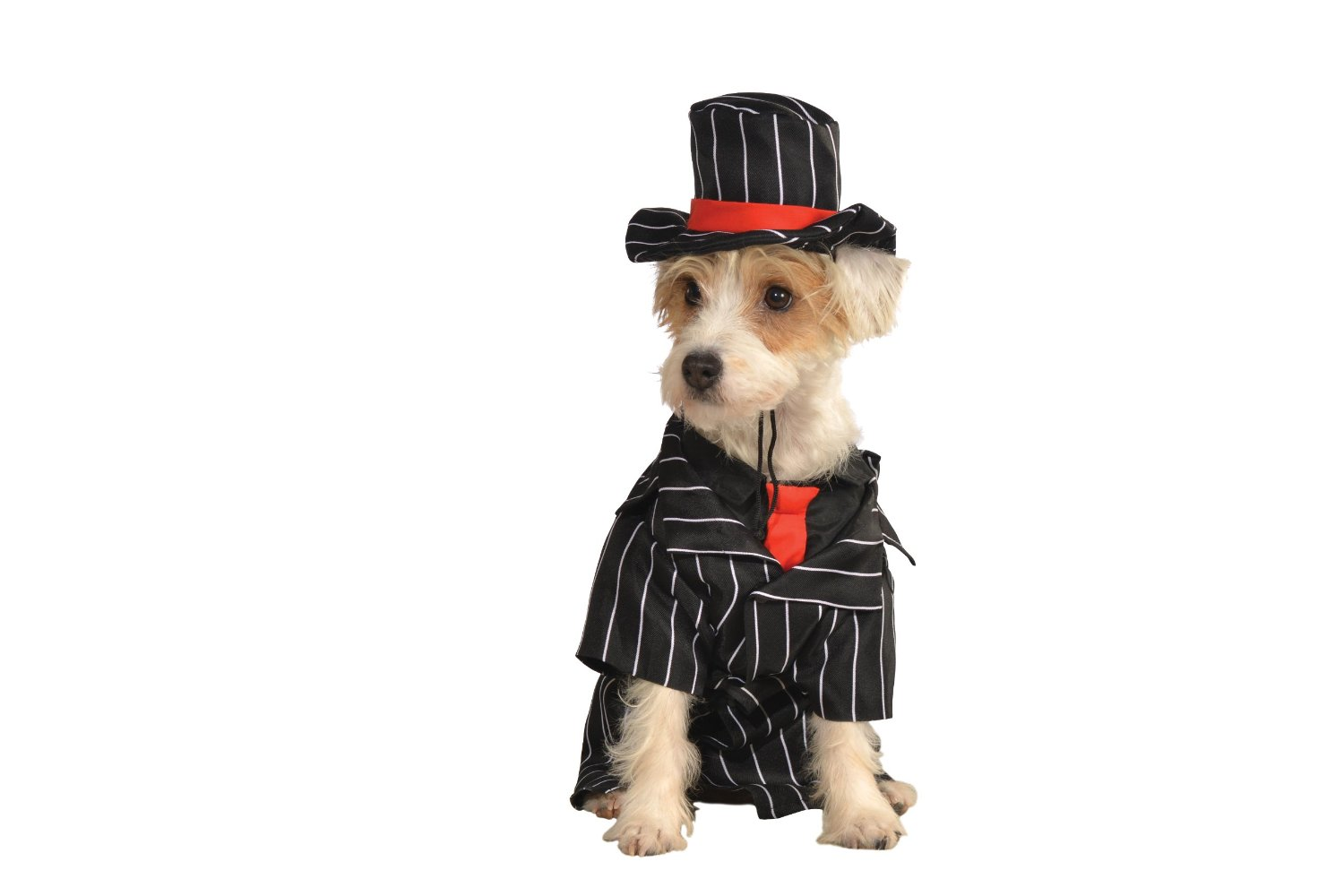 Rubies Costume Halloween Classics Collection Pet Costume, Small