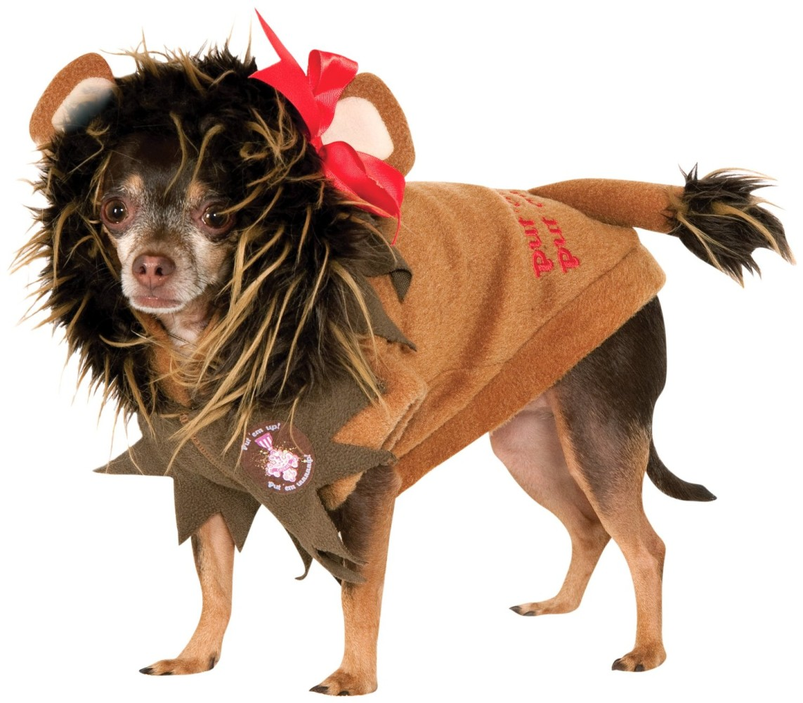 Rubies Costume Wizard of Oz Collection Pet Costume, Small ...