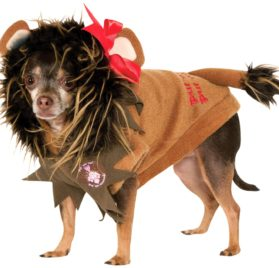 Rubies Costume Wizard of Oz Collection Pet Costume, Small, Cowardly Lion Hoodie