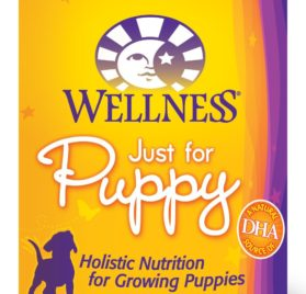 Wellness Complete Health Natural Wet Canned Dog Food, Just for Puppy Chicken & Salmon Recipe, 12.5-Ounce Can (Value Pack of 12)