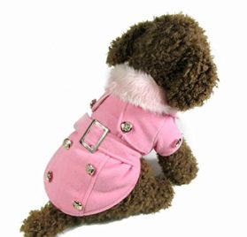 Dogloveit Fashion Elegant Windbreaker Jacket With Woolen Collar Soft Winter Coat for Small Dog Cat Puppy Pet 2