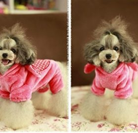 HSE Pet dog toy teddy bear than a Chihuahua puppy dog VIP milk coral cashmere clothing apparel fall and winter clothes,XS 2