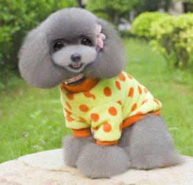PET CONDO Pet Cat Dog Coat Jumper Soft Velvet Dots Small Dog Clothes Sweaters Yellow XS 2