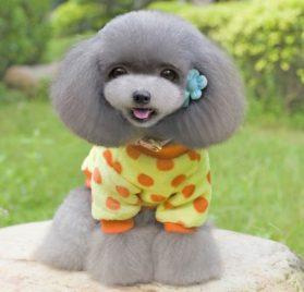 PET CONDO Pet Cat Dog Coat Jumper Soft Velvet Dots Small Dog Clothes Sweaters Yellow XS