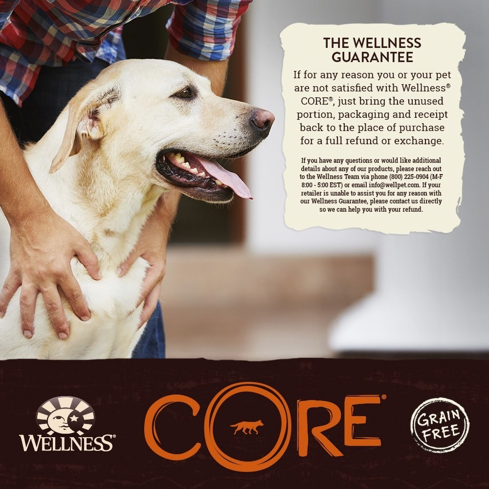 Wellness Core Chunky Centers Natural Grain Free Wet Dog Food
