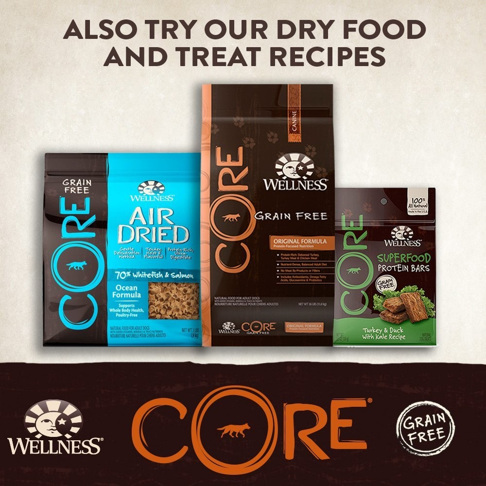 Wellness Core Chunky Centers Natural Grain Free Wet Canned