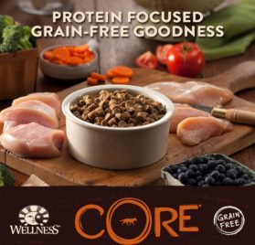 Wellness CORE Natural Grain Free Dry Dog Food, Puppy Health Chicken & Turkey Recipe, 12-Pound Bag 2