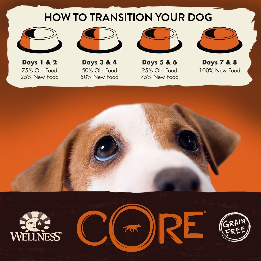 Dachshund Food Wellness Core Natural Dry Grain Free Small Breed