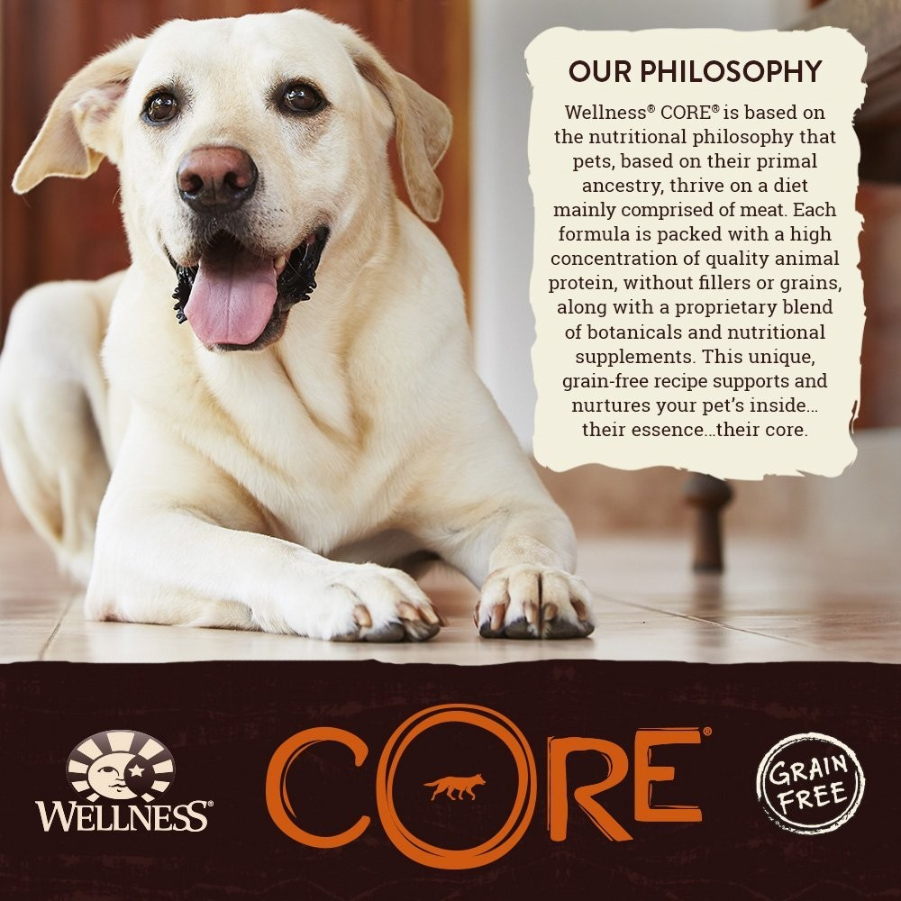 Wellness Core Grain Free Large Breed Puppy Food