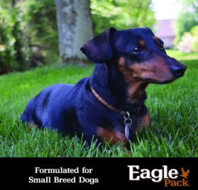 Eagle Pack Natural Dry Dog Food, Small Breed Adult Chicken & Pork Meal Formula, 15-Pound Bag 2