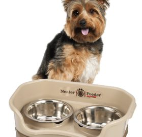 Express Mess Proof Pet Bowl 2