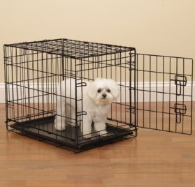 ProSelect Easy Dog Crates for Dogs and Pets - Black 2