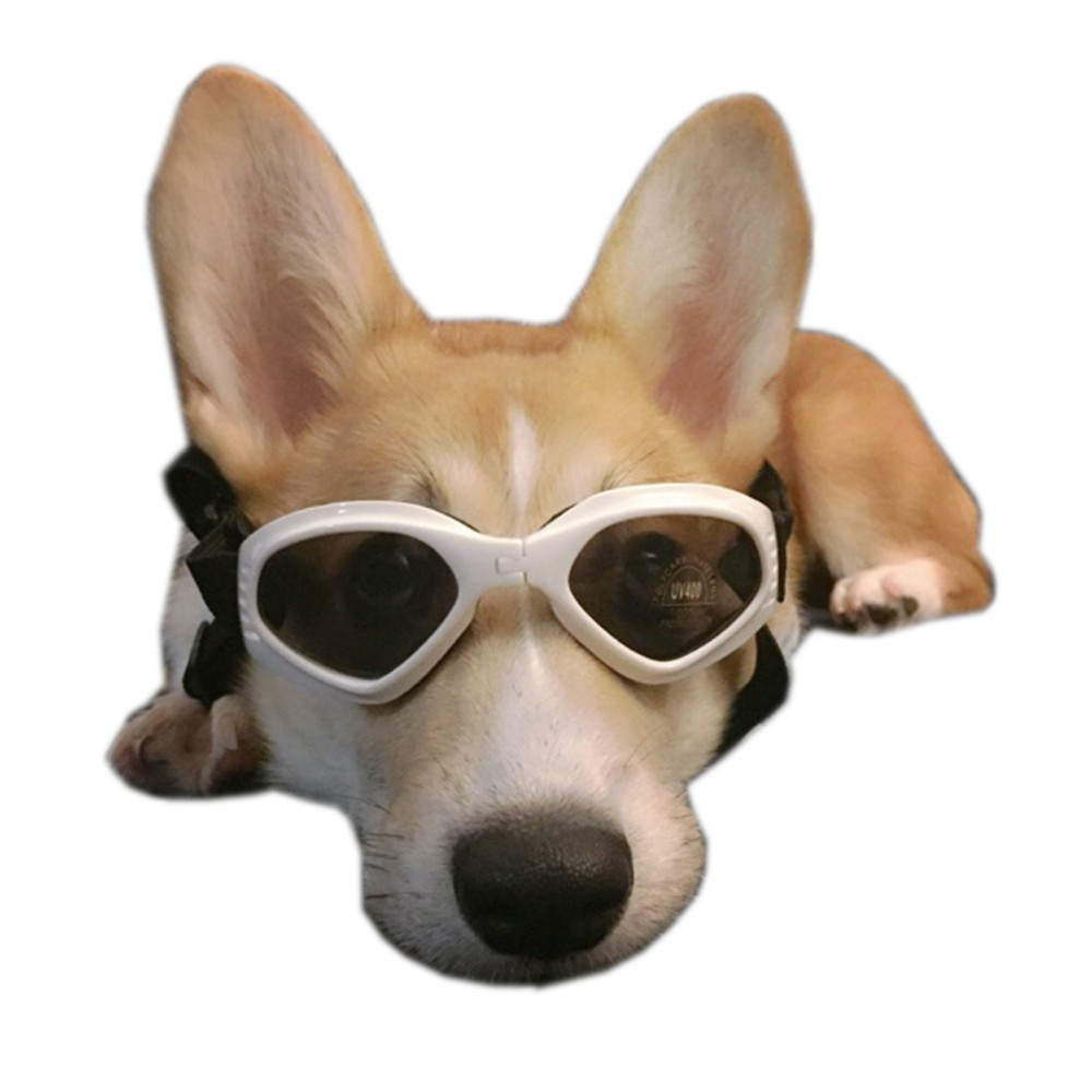 Alfie Pet By Petoga Couture Larry Sun Glasses For Dogs