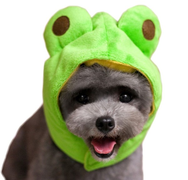 Cat Hat Dog Cap Halloween Pet Party Costumes Dog Hats