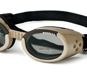 Doggles ILS Small Chrome Frame and Smoke Lens
