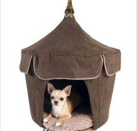 Pet Tent Small Dog Bed - Vive La Chocolate