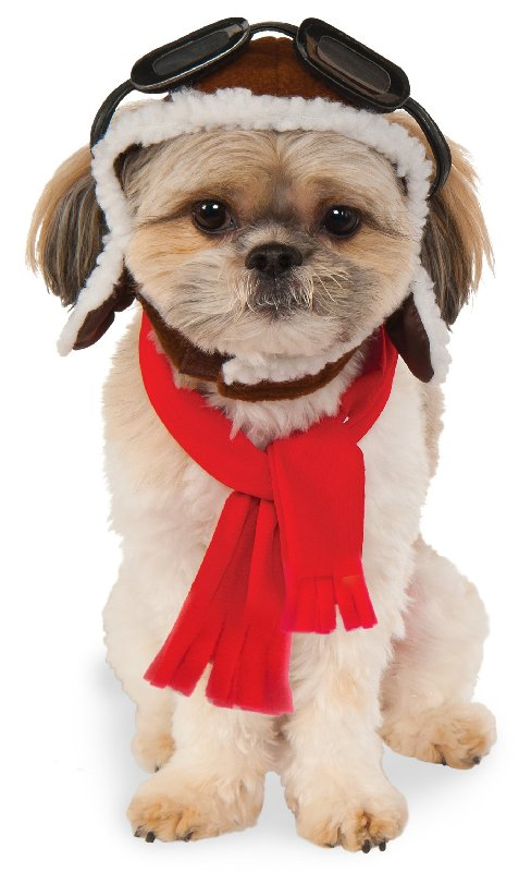 Rubies Costume Company 580222 S M Pet Aviator Hat And